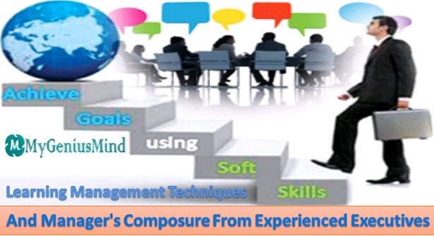 Learning Management Techniques And Managers Composure From Experienced Executives